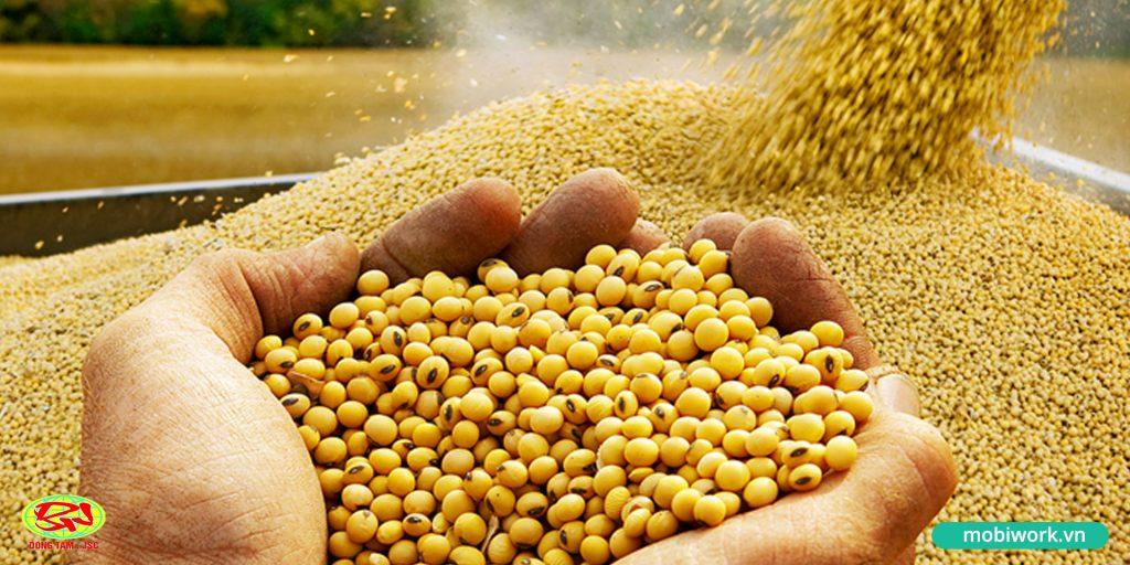 """Thức ăn chăn nuôi Đồng Tâm: """"phản công"""" giành lại thị phầnThức ăn chăn nuôi Đồng Tâm: """"phản công"""" giành lại thị phần"""