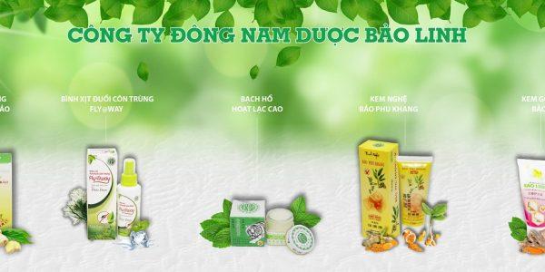 Dược Bảo Linh-2